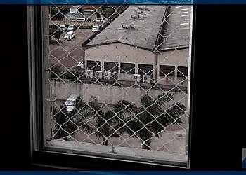 Tela de janela para gatos